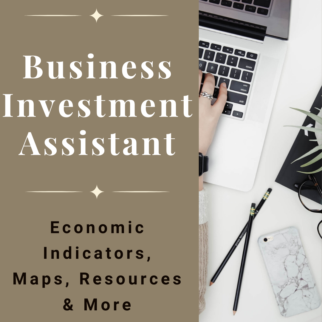 Business Investment Assistant